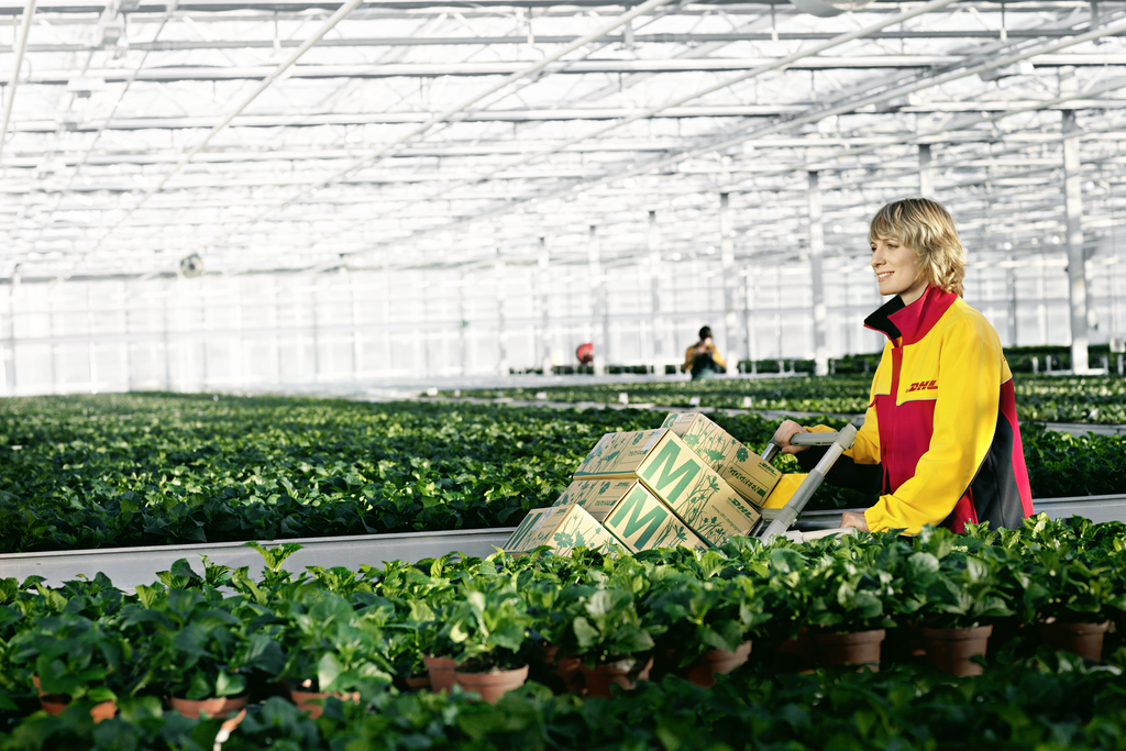 Agribusiness set to boom in Africa, says DHL