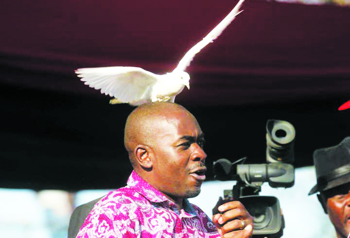 Chamisa to testify before Commission