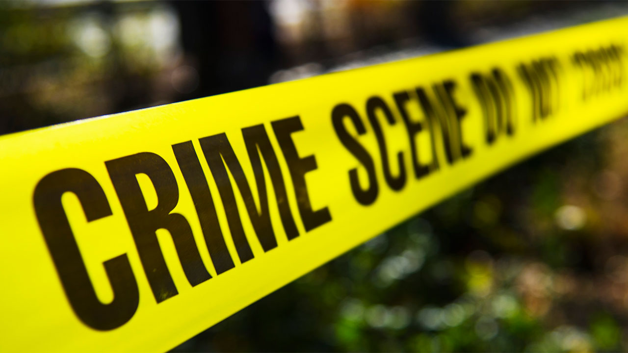 Robbers leave farmer battling for life