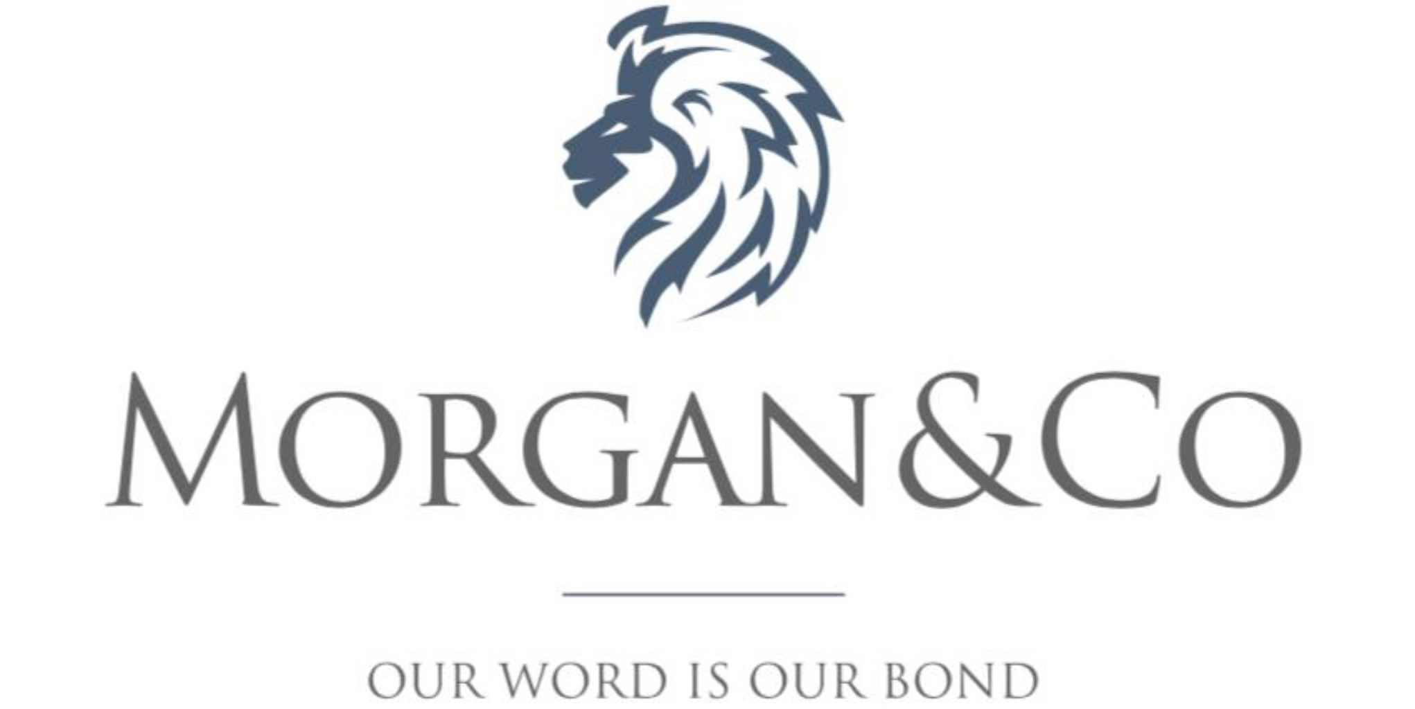 Morgan & Co launches research app