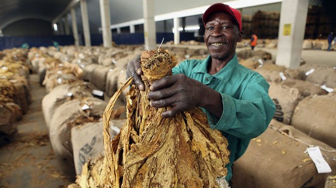 Tobacco farmers protest against buyer