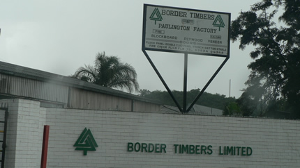 Border Timbers shares finally settled on CSD