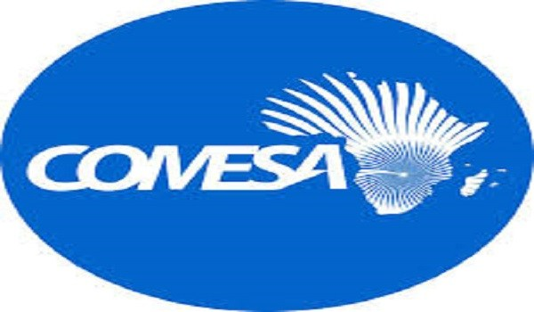 Comesa explores ways to reshape policy