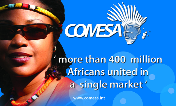 Comesa 'business visa' nears implementation
