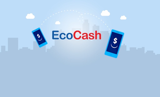 EcoCash charges further slashed