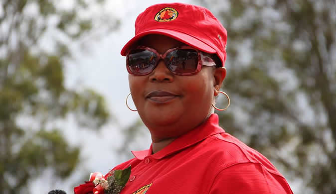 Khupe faction blames 'rebel' tag for poor election showing