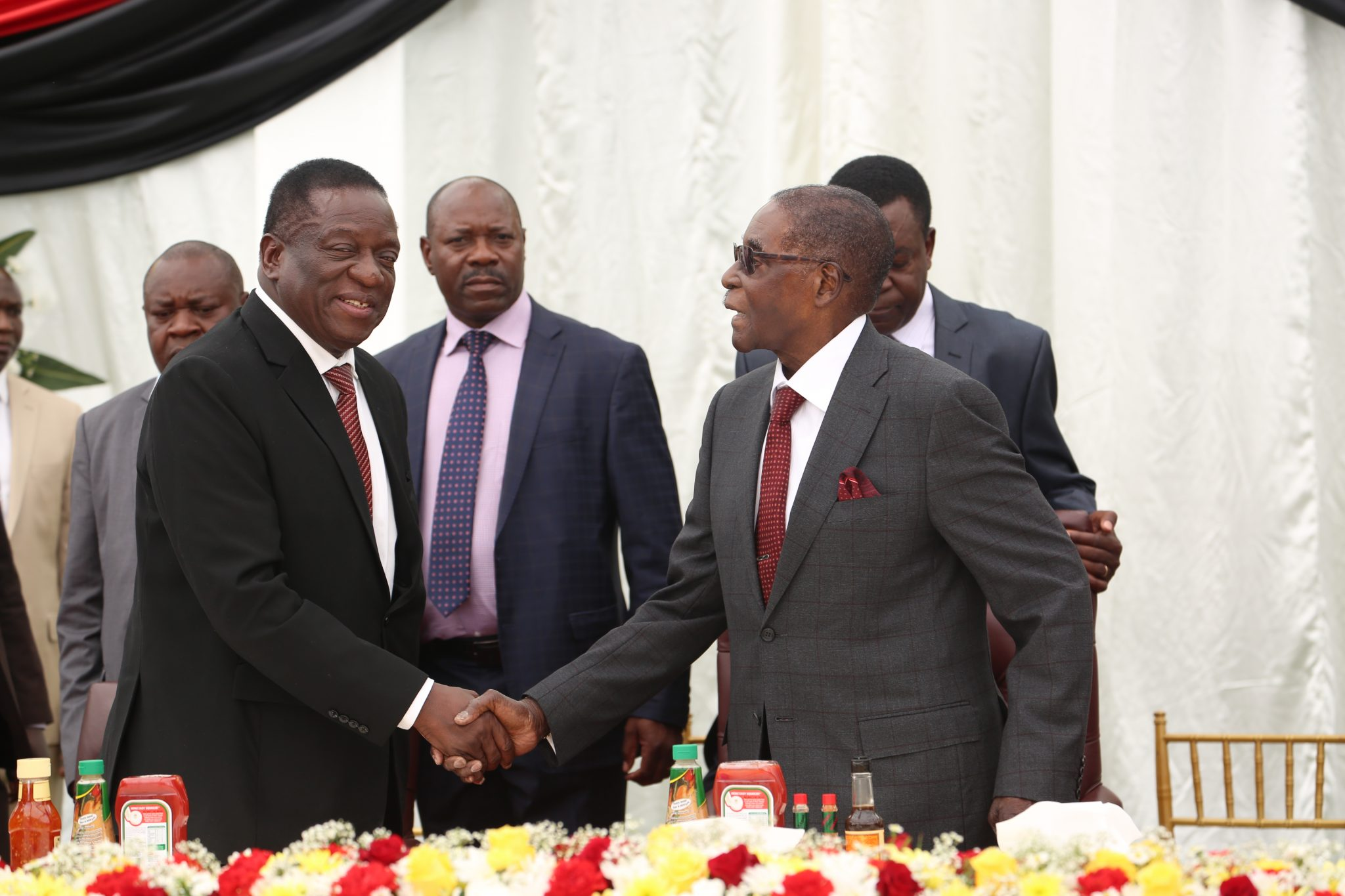 Mugabe, Mnangagwa fight takes new twist