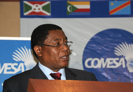 Zim urged to engage China on $36bn investment fund