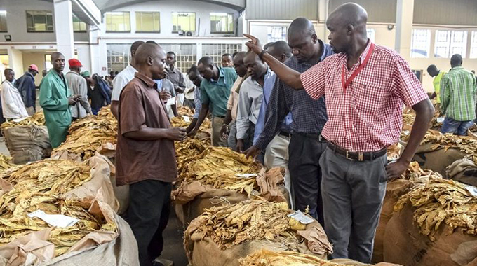 Tobacco farmers gross over $500m